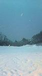 2009.02.16女鹿平002